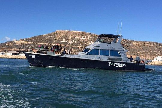 port de pêche à Agadir.
